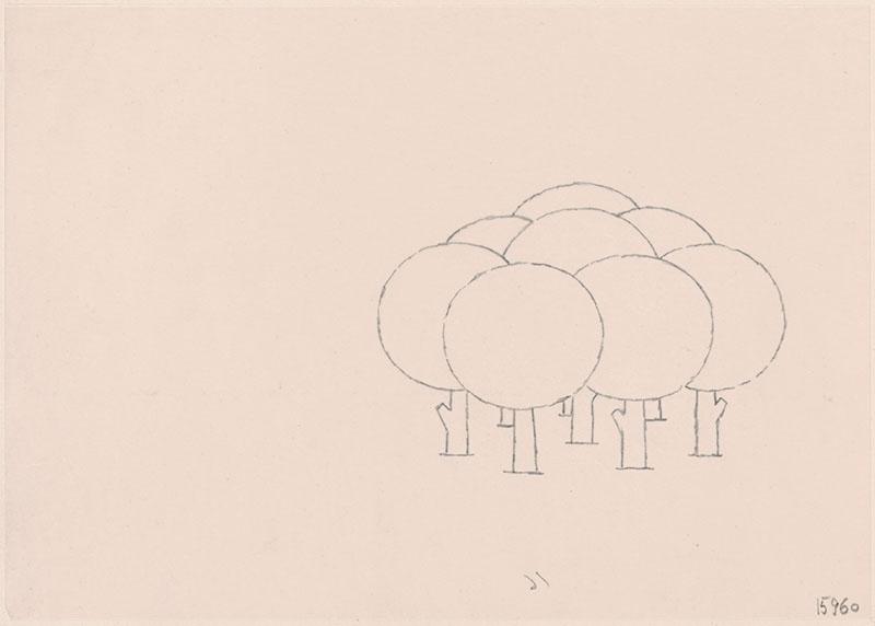 wie zijn rug is dat? [bomen op p. 22, met als thema: 'hoeveel bomen staan er in dit bos?']