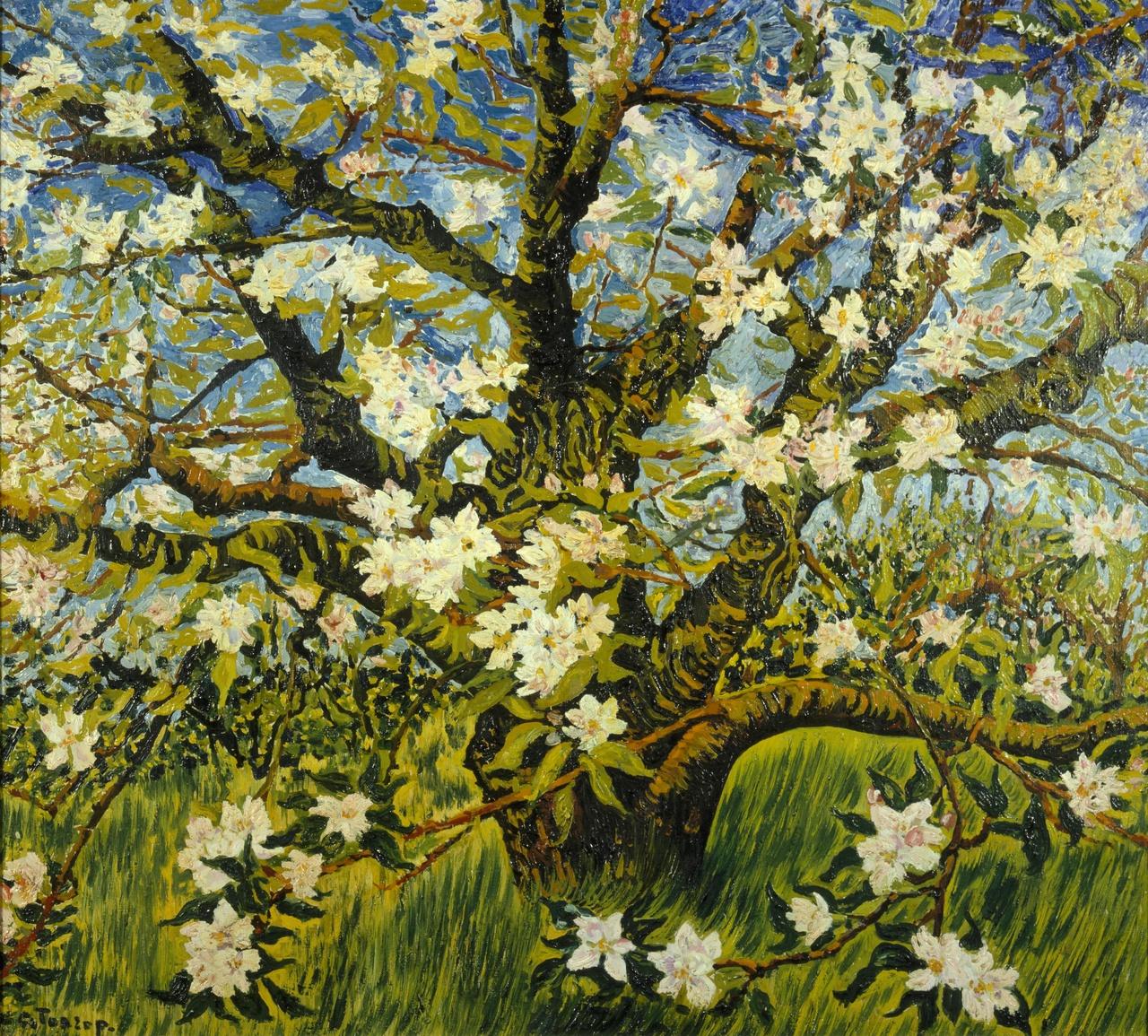 Bloeiende appelboom
