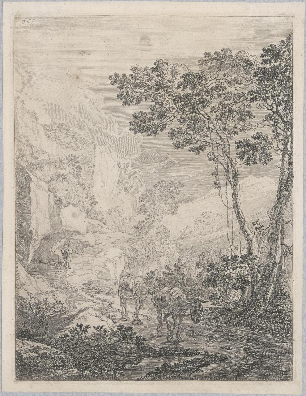 Twee muilezels (Rocca Aquatico bij Ancona)
