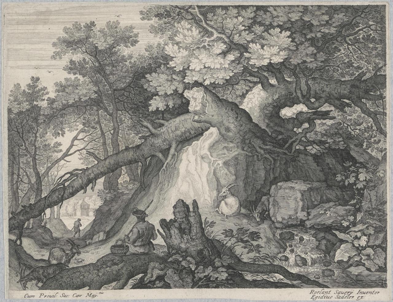 Geitenhoeder met vier geiten bij een waterval