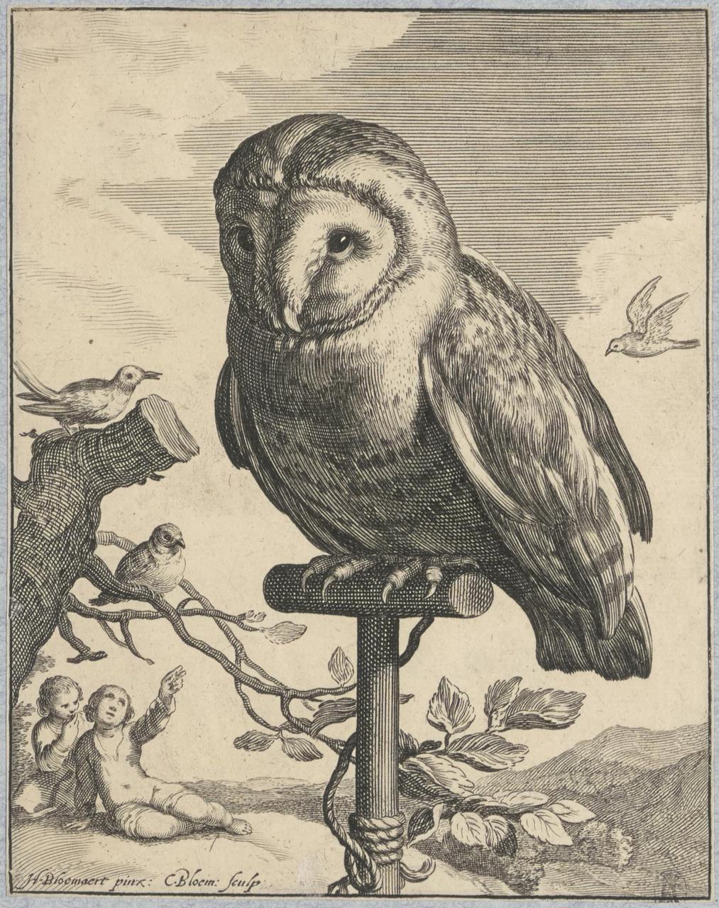 Een uil op een stok