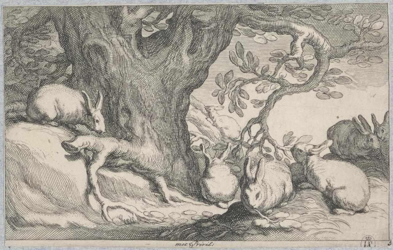 Konijnen aan de voet van een boom