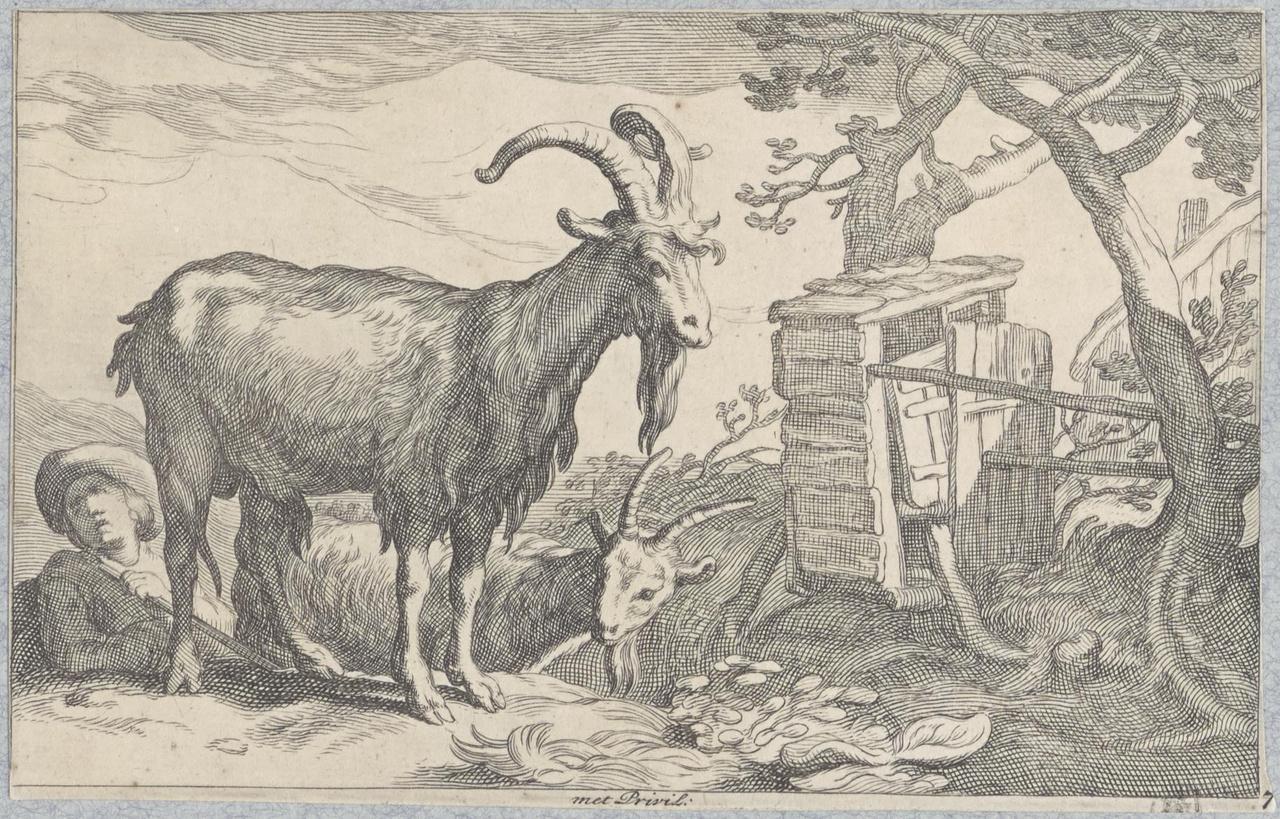 Twee bokken met herdersjongen bij een schuurtje