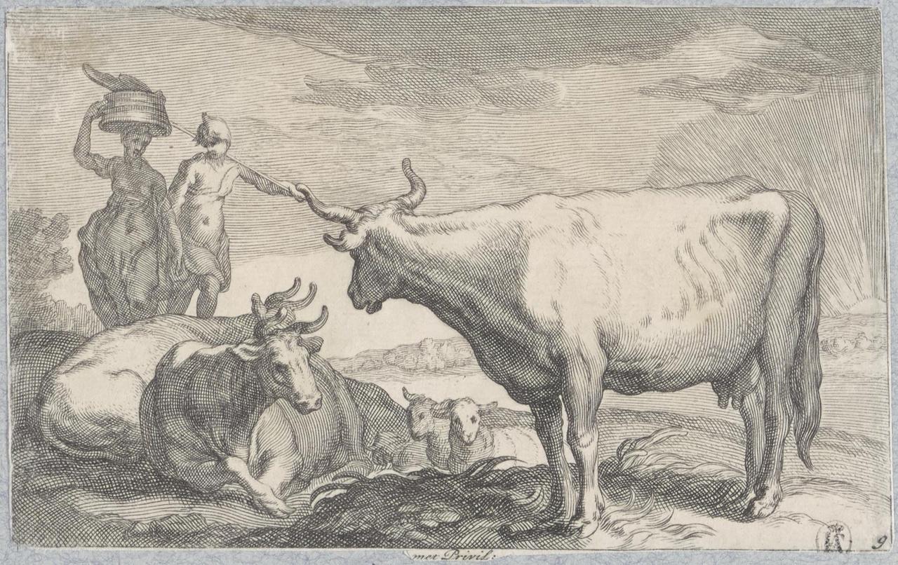 Koeien en schapen met twee melksters