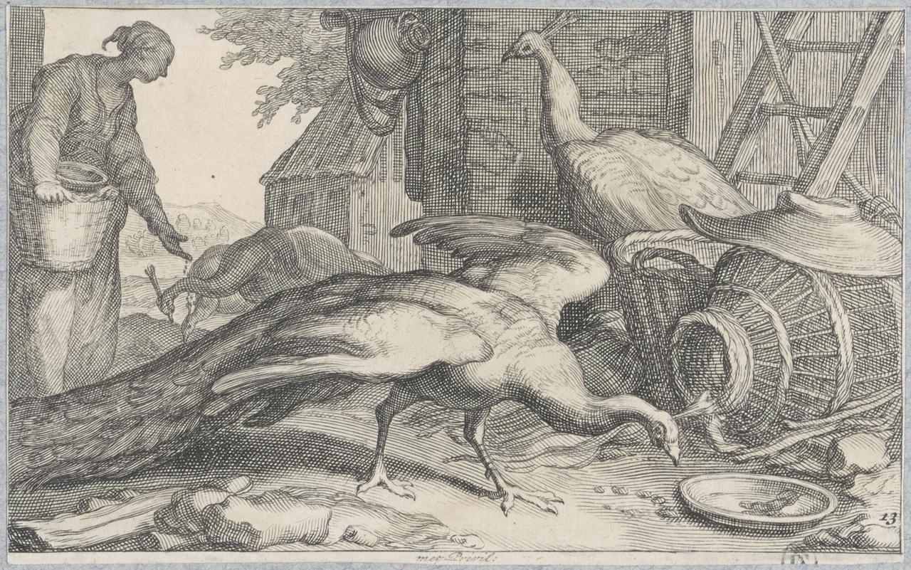 Boerin, pauwen voerend op het erf