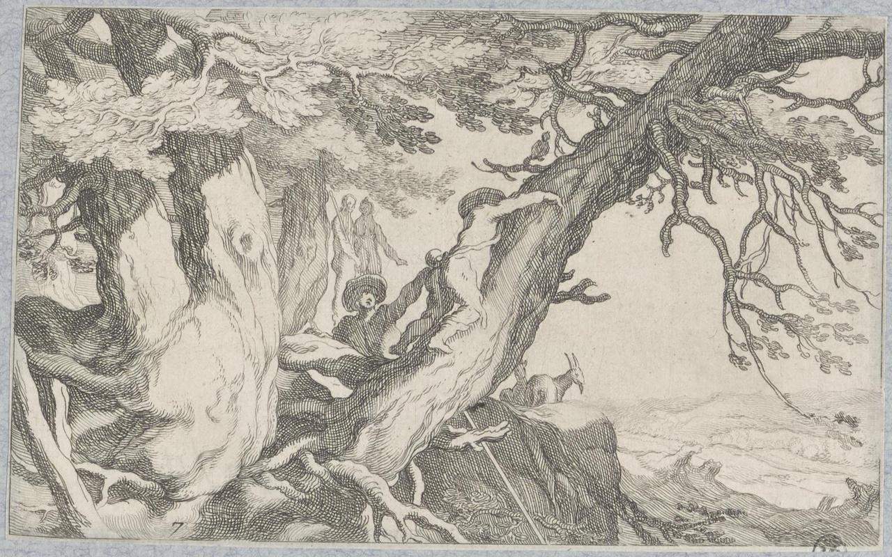 Twee klimmende jongens in overhangende boom