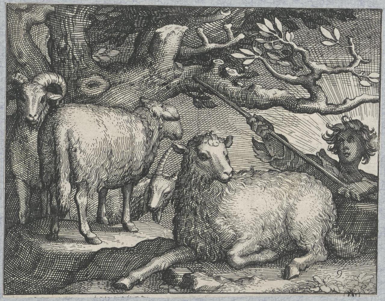 Herder met schapen bij opkomende zon
