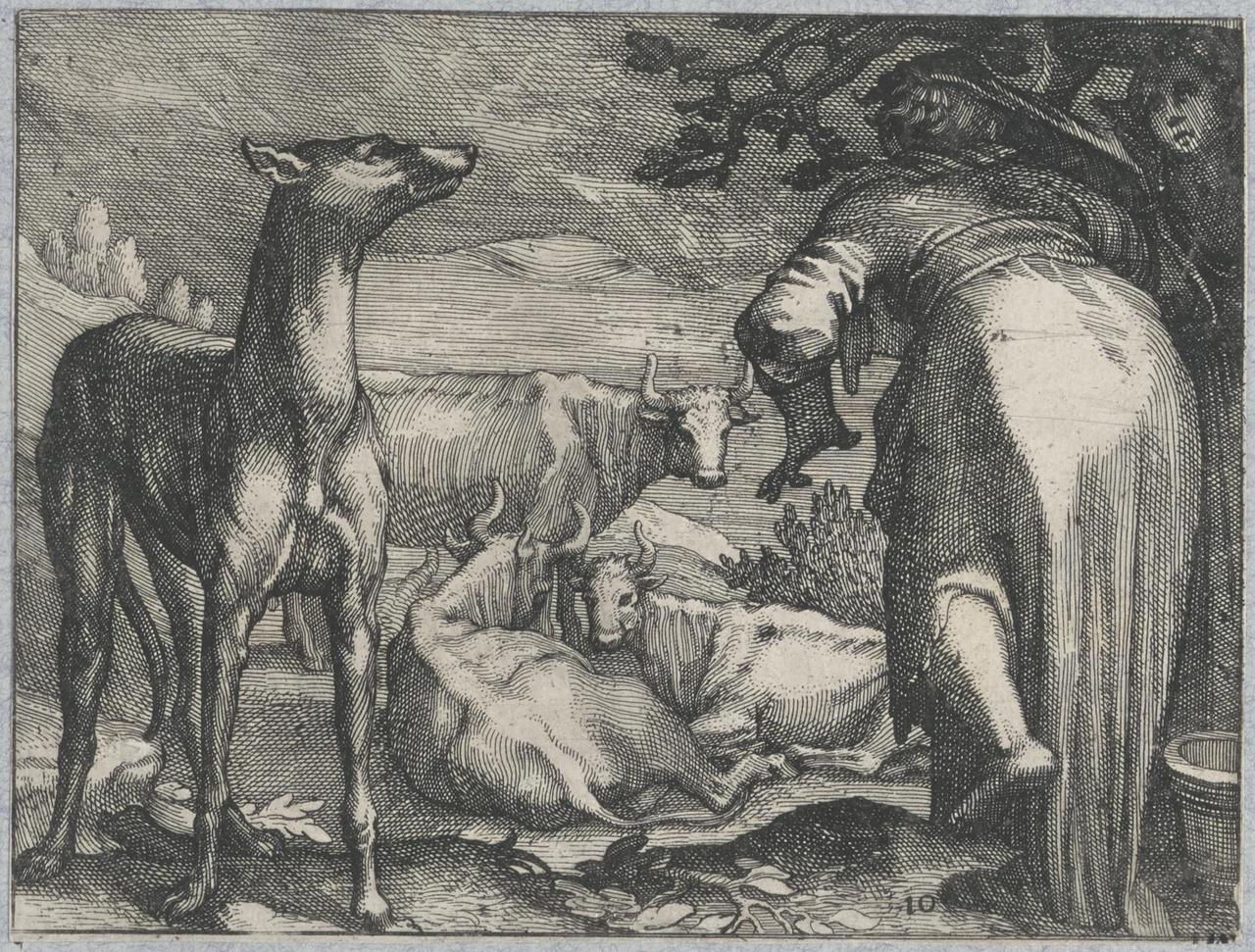 Vrouw op de rug gezien en grote hond in landschap met koeien