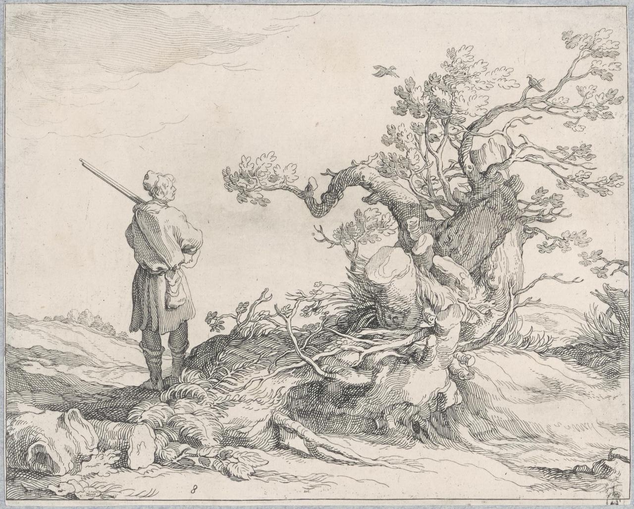 Jager bij een grillige boompartij