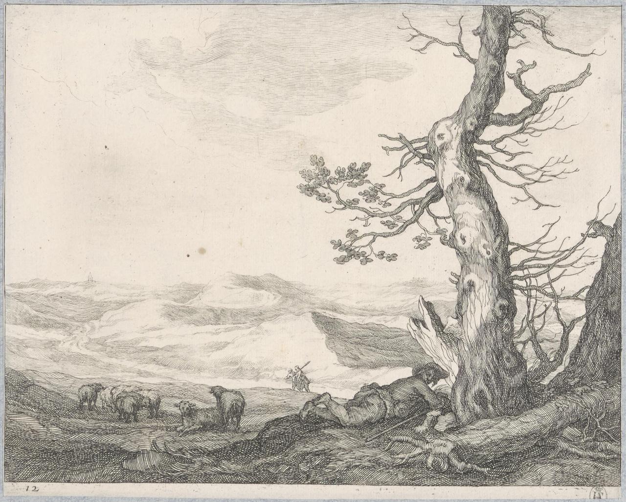 Rustende herder bij een boom in een heuvellandschap met kudde schapen