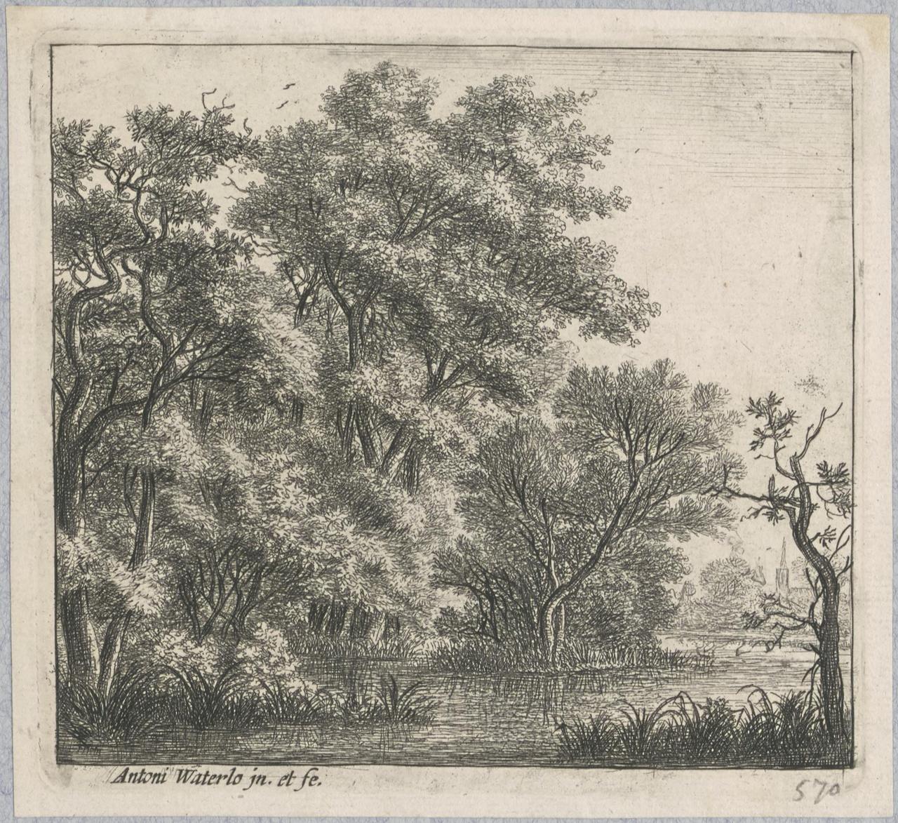 Boslandschap aan een rivier