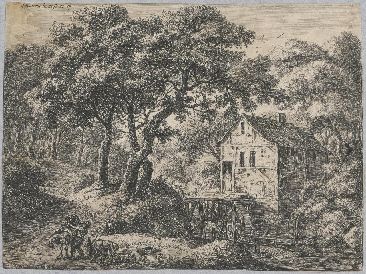 De molen in het bos
